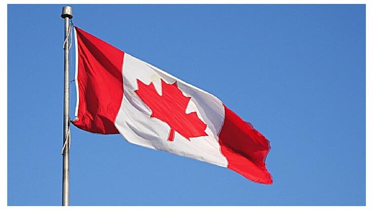 Waving Flag (1) (1)