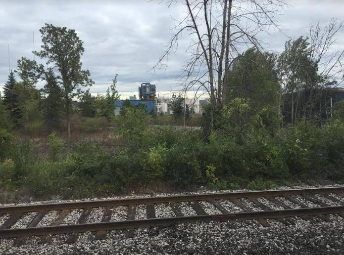adam_train